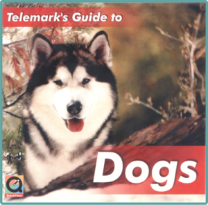 telemarks-guide-to-dogs